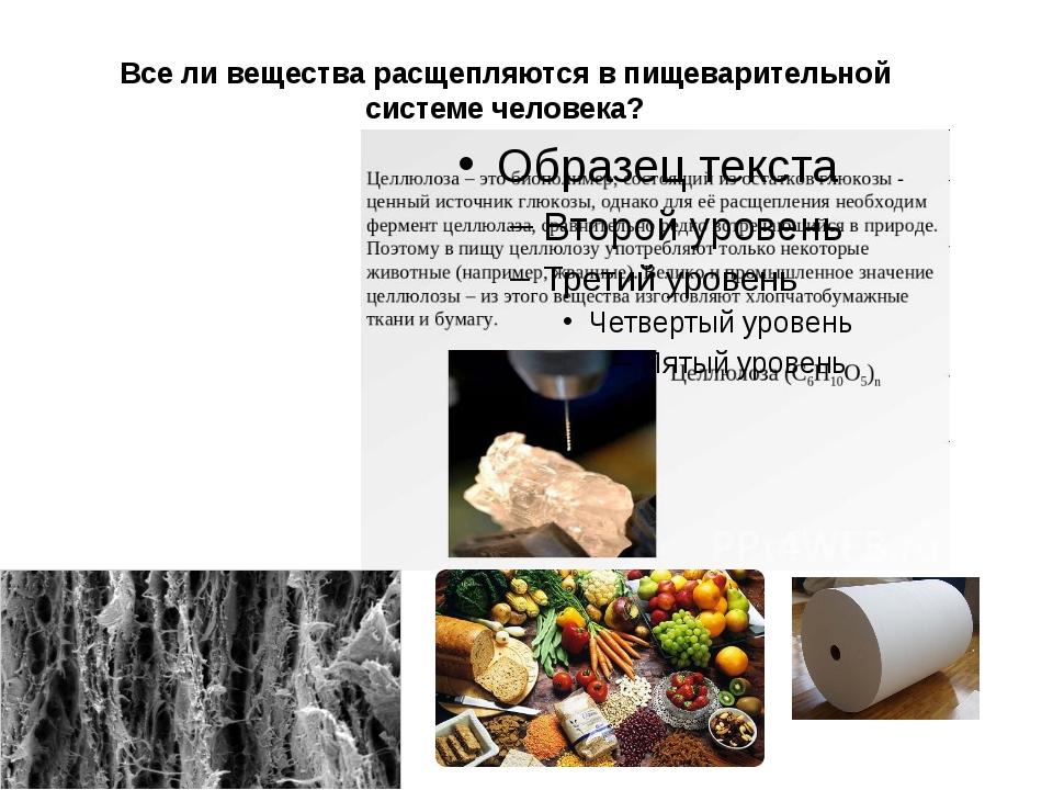 Все ли вещества расщепляются в пищеварительной системе человека?