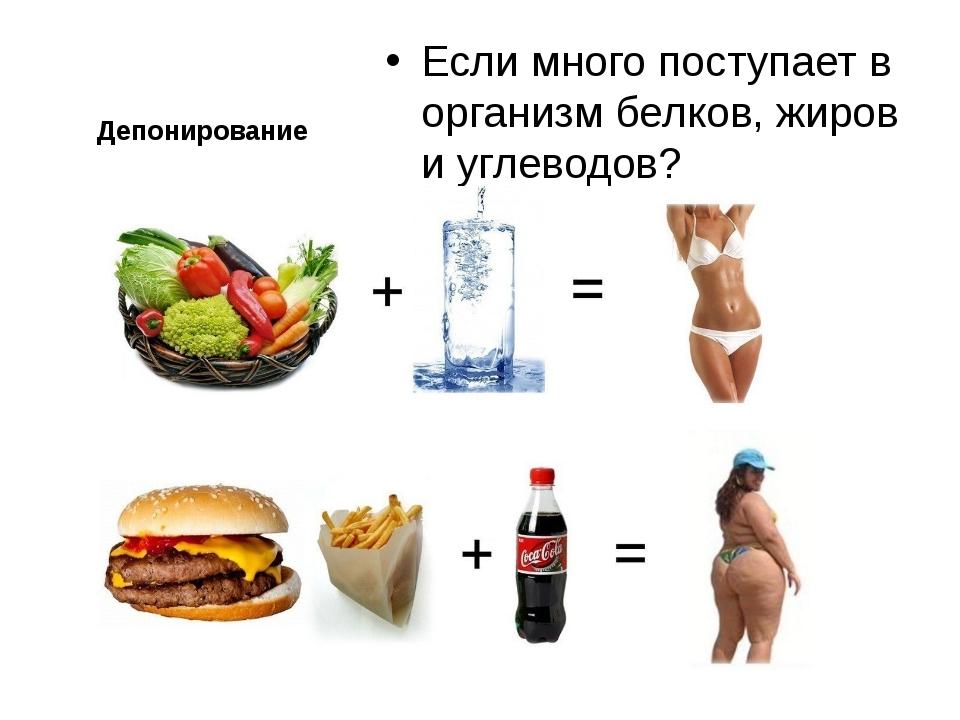 Депонирование Если много поступает в организм белков, жиров и углеводов?