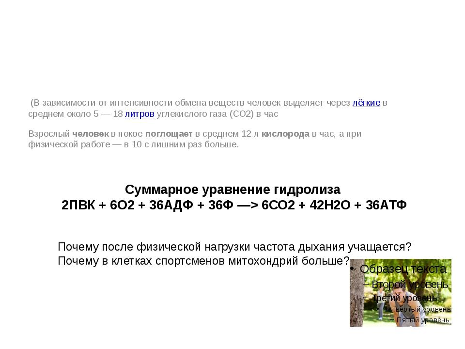 Суммарное уравнение гидролиза 2ПВК + 6О2+ 36АДФ + 36Ф —> 6СО2+ 42Н2О + 36АТ...