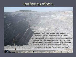 Челябинская область Сырьевая база практически всех добывающих отраслей района