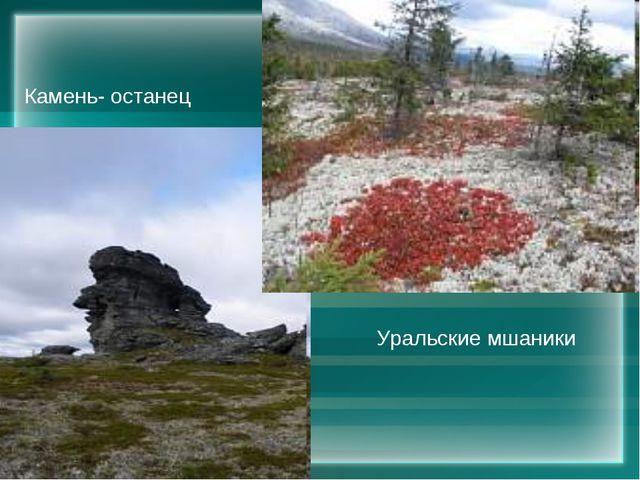 Камень- останец Уральские мшаники