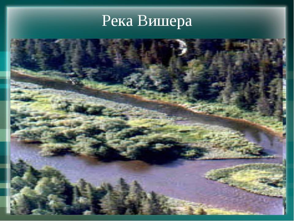 Река Вишера