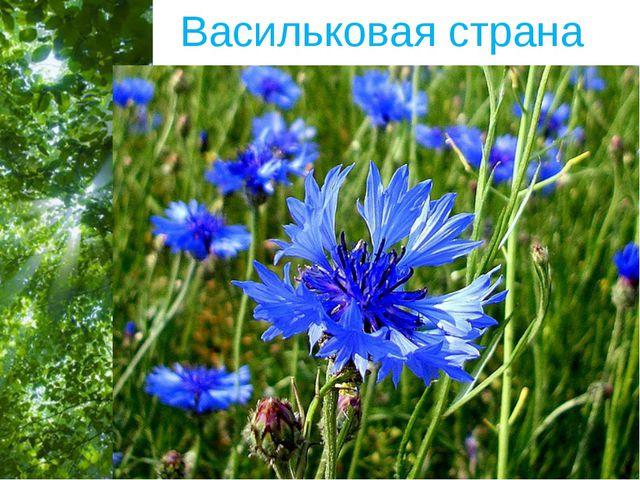 Васильковая страна Free Powerpoint Templates Page *