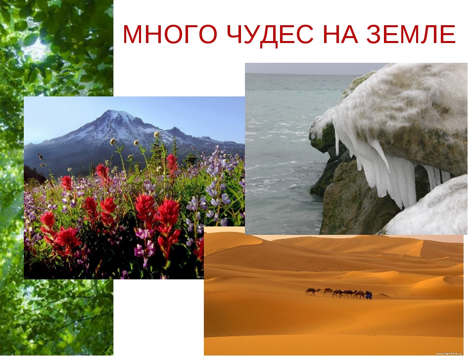 МНОГО ЧУДЕС НА ЗЕМЛЕ Free Powerpoint Templates Page *