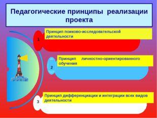 Педагогические принципы реализации проекта 1 Принцип поиково-исследовательско