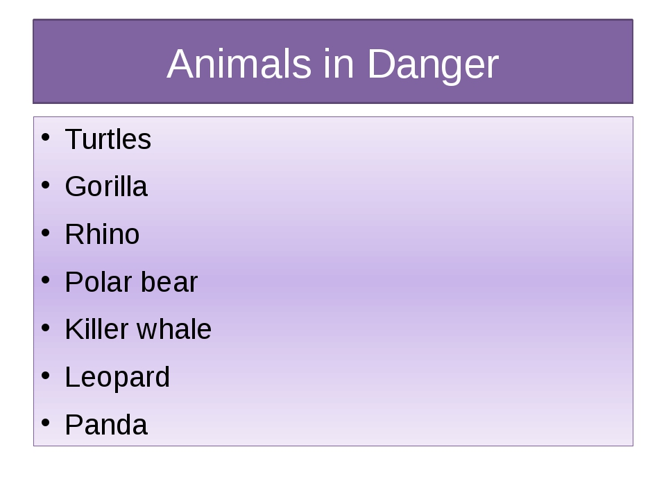 Animals in Danger Turtles Gorilla Rhino Polar bear Killer whale Leopard Panda