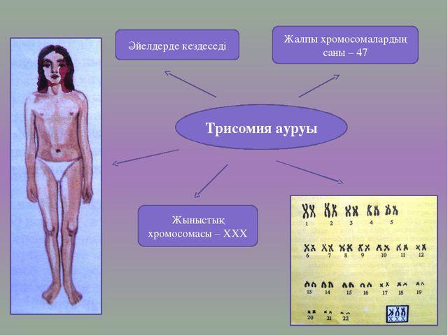 Трисомия ауруы Әйелдерде кездеседі Жыныстық хромосомасы – ХХХ Жалпы хромосома...