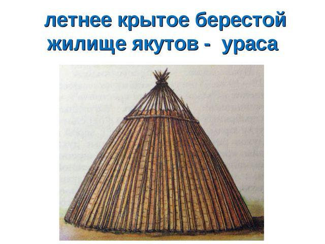 летнее крытое берестой жилище якутов - ураса