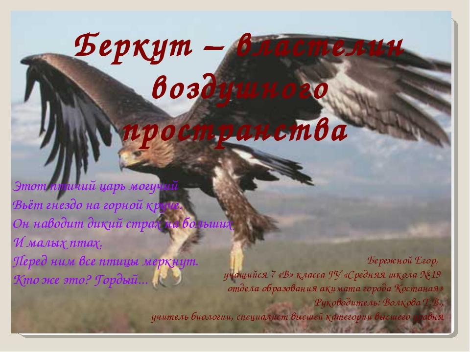 Беркут – властелин воздушного пространства Этот птичий царь могучий Вьёт гне...