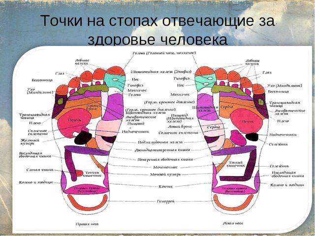 Точки на стопах отвечающие за здоровье человека