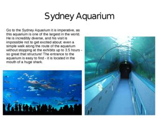 Sydney Aquarium Go to the Sydney Aquarium it is imperative, as this aquarium