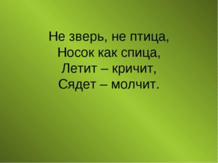 Не зверь, не птица, Носок как спица, Летит – кричит, Сядет – молчит.