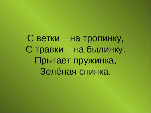 С ветки – на тропинку, С травки – на былинку. Прыгает пружинка, Зелёная спинка.
