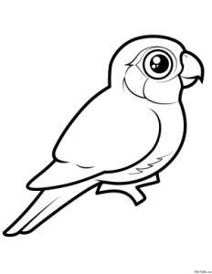 raskraski-zhivotnyh--pticy--05.jpg