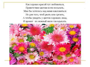 Как хорошо красой тут любоваться, Приветствие цветам всем посылать. Мне бы хо