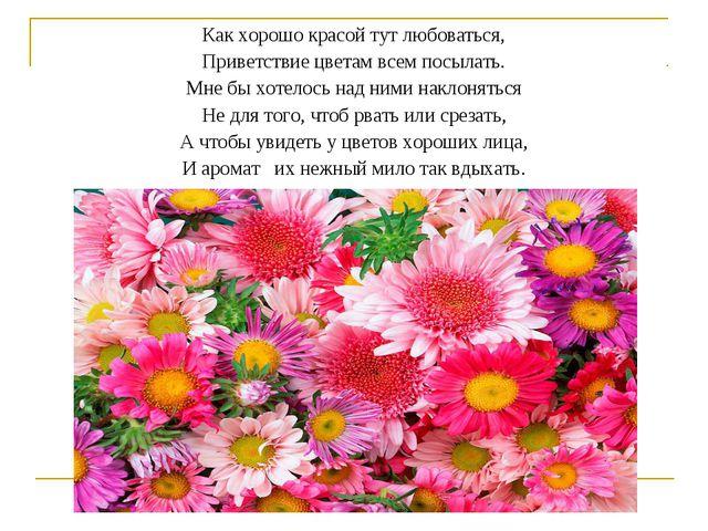 Как хорошо красой тут любоваться, Приветствие цветам всем посылать. Мне бы хо...