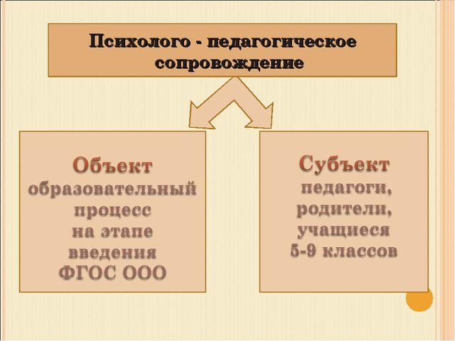 Психолого - педагогическое сопровождение