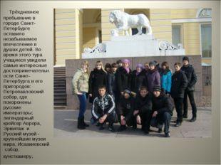 Трёхдневное пребывание в городе Санкт-Петербурге оставило незабываемое впеча