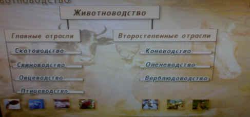 http://festival.1september.ru/articles/412552/image2568.jpg