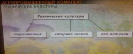 http://festival.1september.ru/articles/412552/image2570.jpg