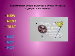Вспоминаем слова. Выберите слова, которые подходят к картинкам NEW NEST TEST