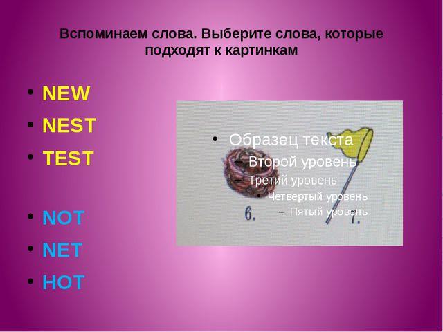 Вспоминаем слова. Выберите слова, которые подходят к картинкам NEW NEST TEST...