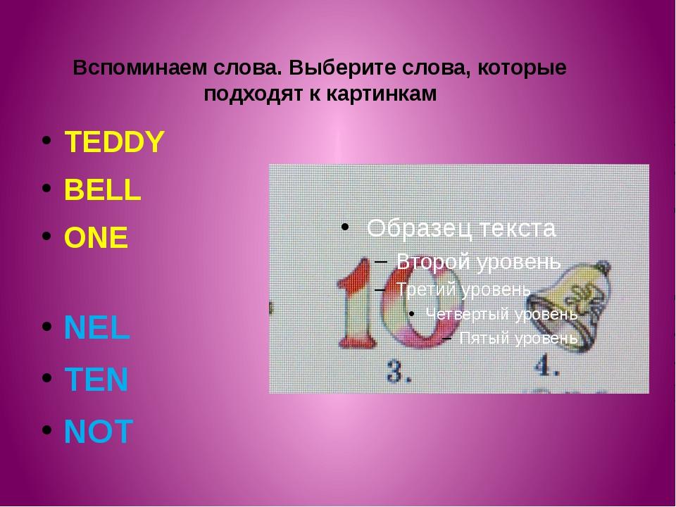 Вспоминаем слова. Выберите слова, которые подходят к картинкам TEDDY BELL ONE...