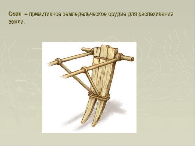 Соха – примитивное земледельческое орудие для распахивания земли.
