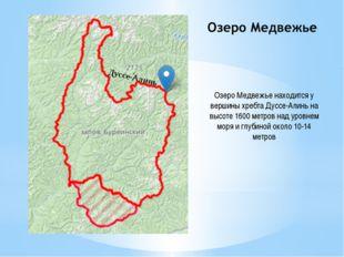 Озеро Медвежье находится у вершины хребта Дуссе-Алинь на высоте 1600 метров н