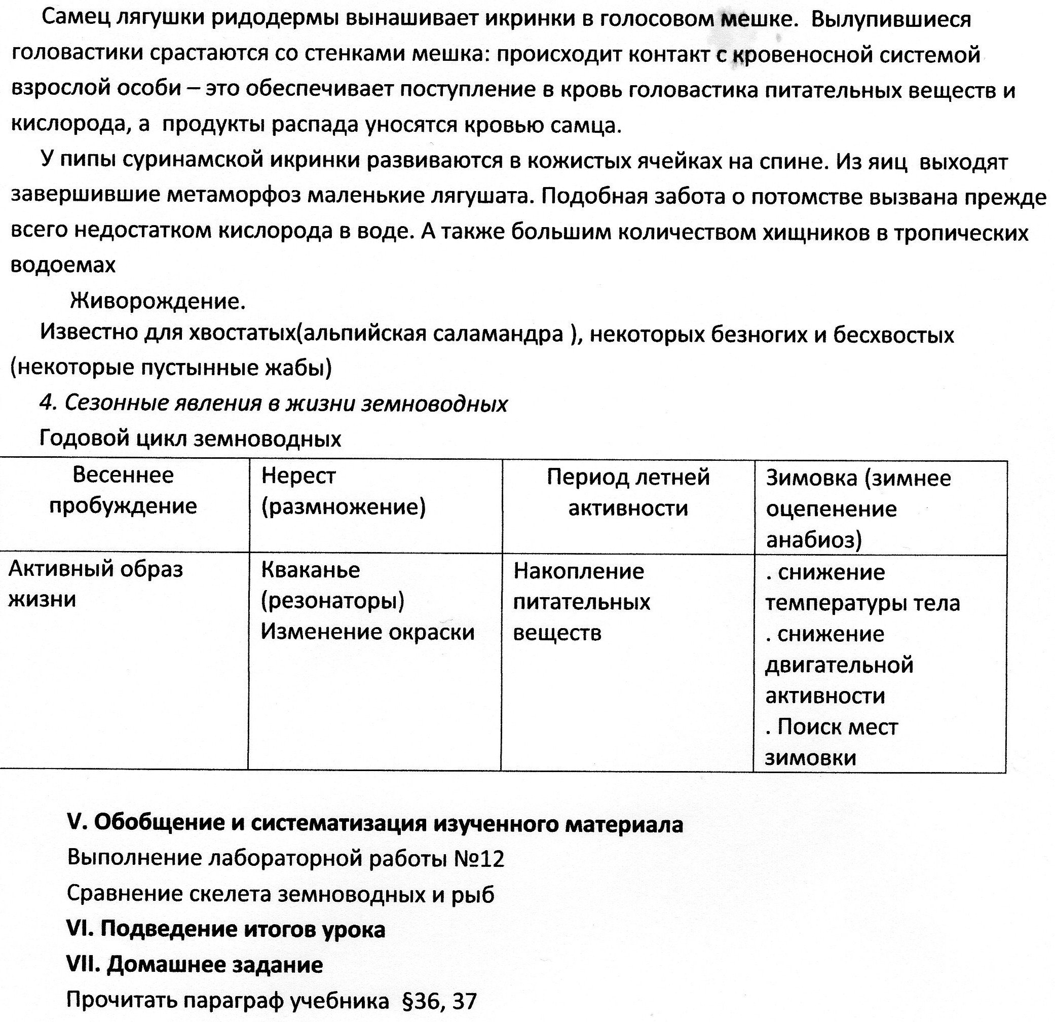 C:\Users\Лена\Pictures\img046.jpg