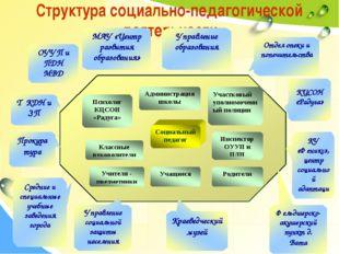 Структура социально-педагогической деятельности