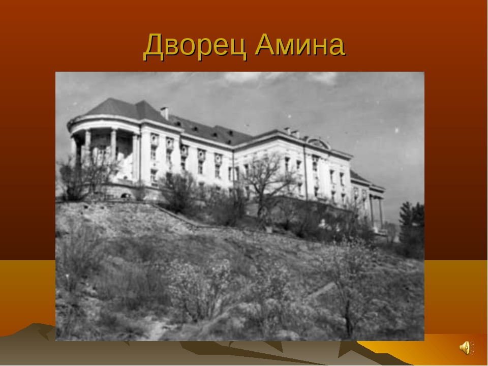 Дворец Амина