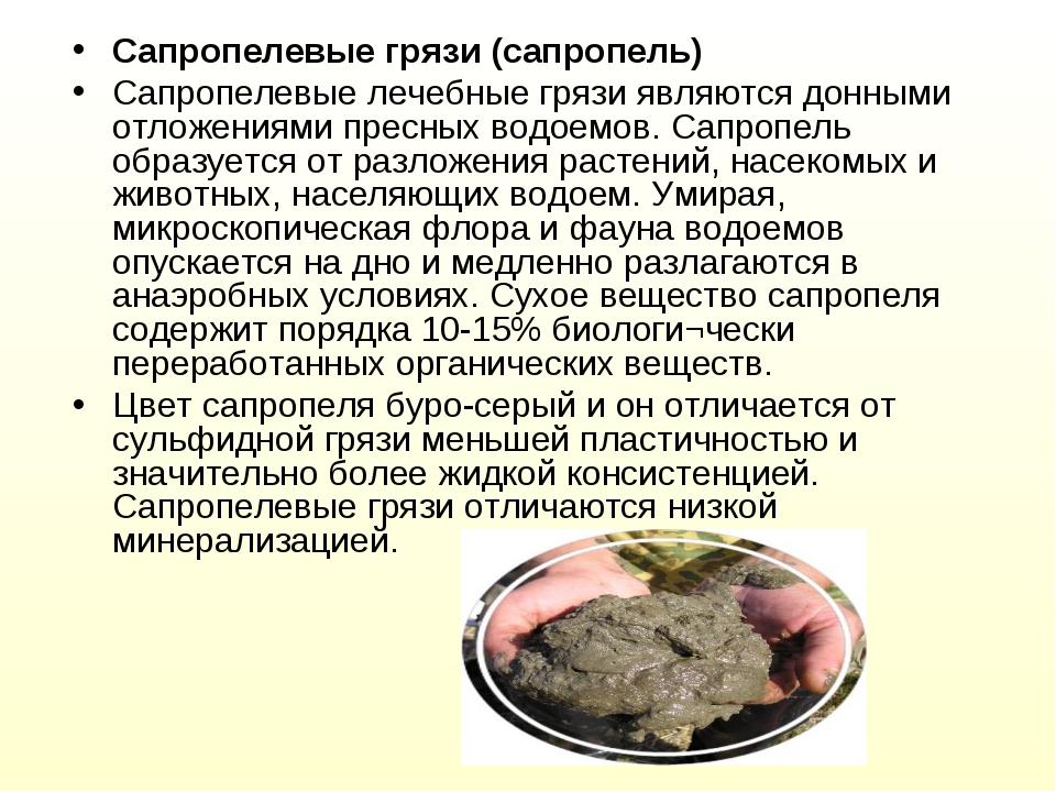 Сапропелевые грязи (сапропель) Сапропелевые лечебные грязи являются донными о...