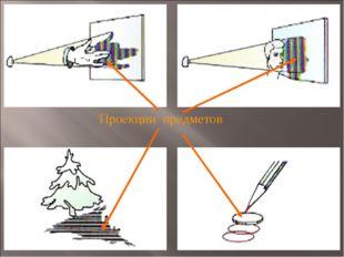 Проекции предметов