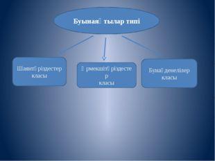 Буынаяқтылар типі Бунақденелілер класы Өрмекшітәріздестер класы Шаянтәріздест