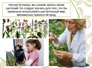 Изучая ботанику, мы узнаём законы жизни растений. Ее следует изучать для того
