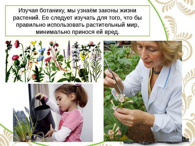Изучая ботанику, мы узнаём законы жизни растений. Ее следует изучать для того...