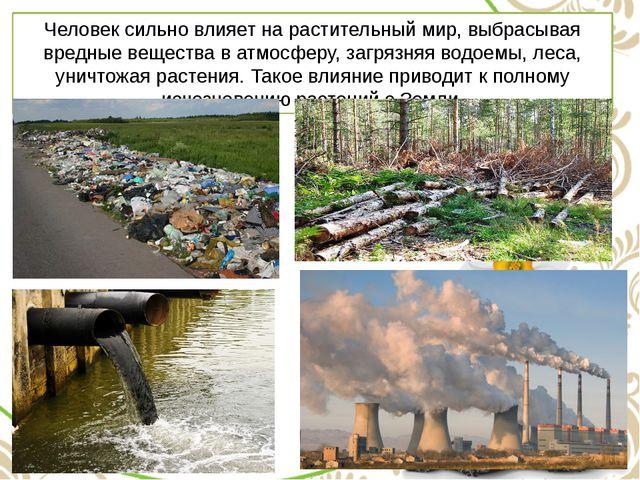 Человек сильно влияет на растительный мир, выбрасывая вредные вещества в атмо...