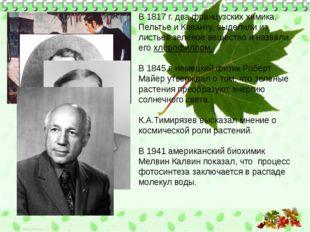 В 1817 г. два французских химика, Пельтье и Каванту, выделили из листьев зел