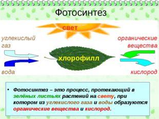 Фотосинтез – это процесс, протекающий в зелёных листьях растений на свету, п