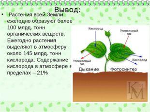 Вывод: Растения всей Земли ежегодно образуют более 100 млрд. тонн органическ