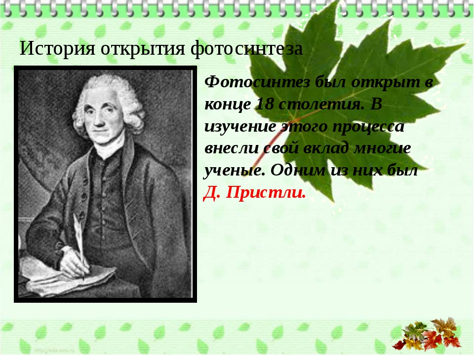 История открытия фотосинтеза Фотосинтез был открыт в конце 18 столетия. В изу...