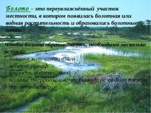 Болото – это переувлажнённый участок местности, в котором появилась болотная
