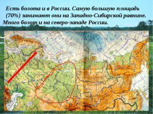 Есть болота и в России. Самую большую площадь (70%) занимают они на Западно-С
