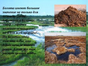 Болота имеют большое значение не только для человека (люди добывают в болотах