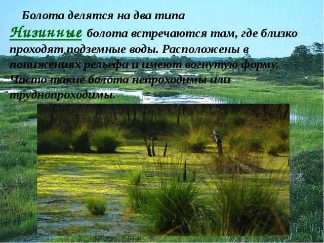 Болота делятся на два типа Низинные болота встречаются там, где близко проход...