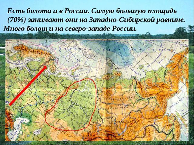 Есть болота и в России. Самую большую площадь (70%) занимают они на Западно-С...