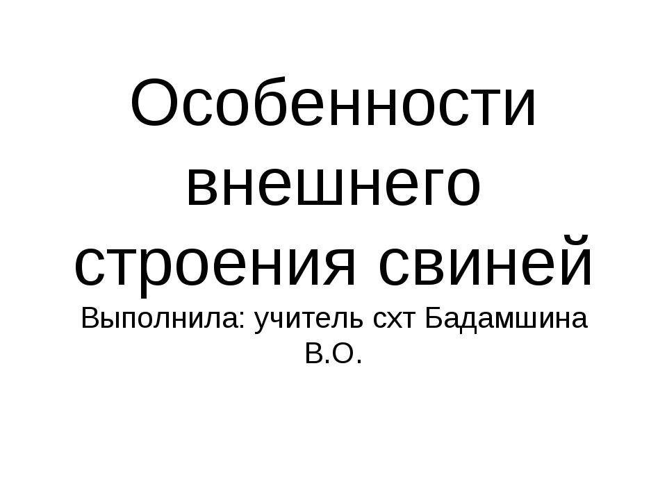 Особенности внешнего строения свиней Выполнила: учитель схт Бадамшина В.О.