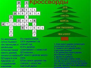 ДУБ КЕДР СОСНА БЕРЁЗА ЭВКАЛИПТ ЛИСТВЕННИЦА 1. Кора какого дерева полезна для