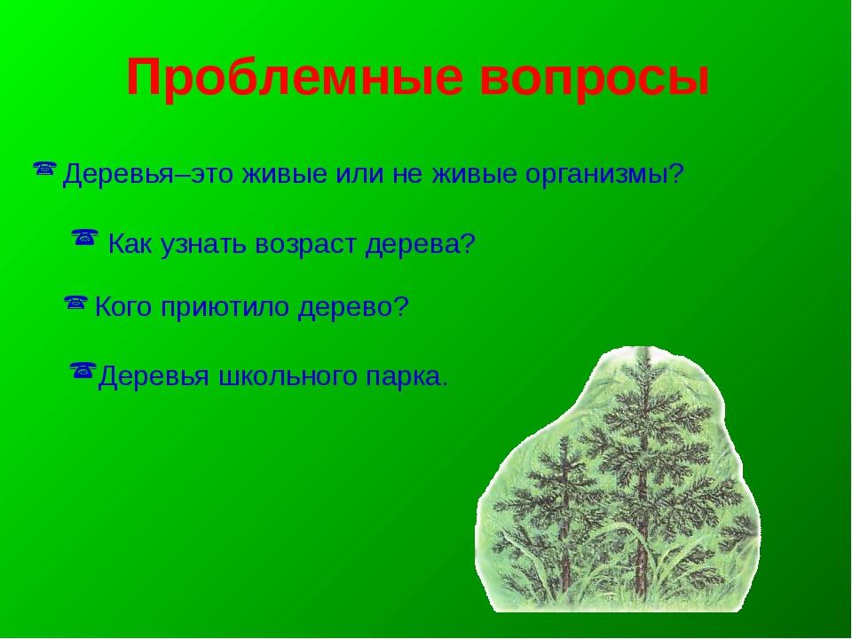 Деревья–это живые или не живые организмы? Как узнать возраст дерева? Кого пр...